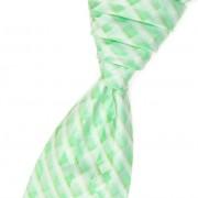 Regata PREMIUM + kapesníček, zelená