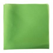 Kapesníček AVANTGARD LUX, zelená